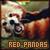 Red Panda: